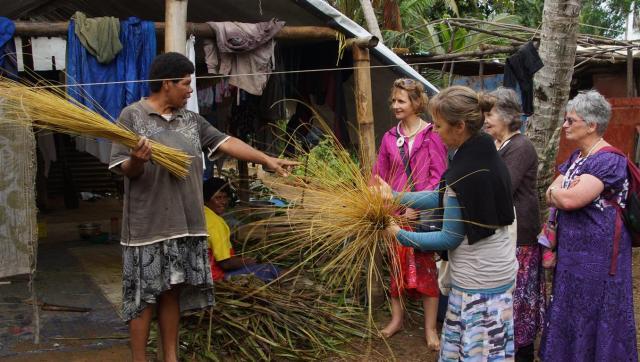 final h grass broom (Medium)
